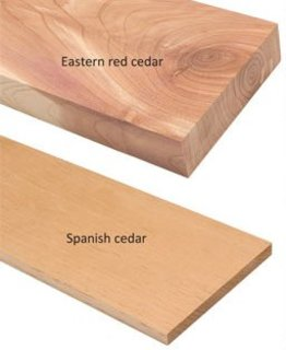 Cedars2