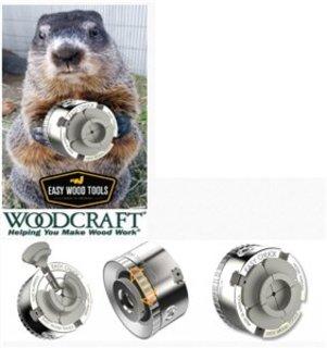 Woodchuck1