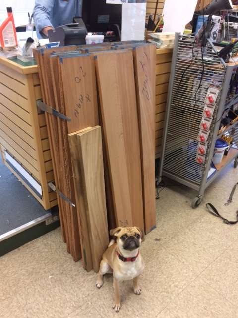 rocky-our-store-mascot-wilmington