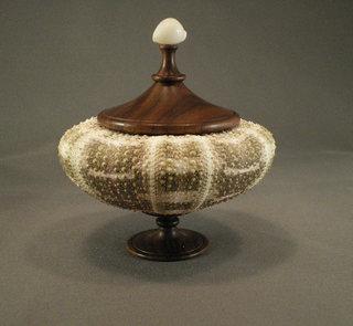 Urchin box walnut shell finial