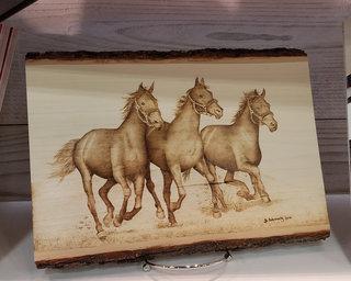 Horses 1000