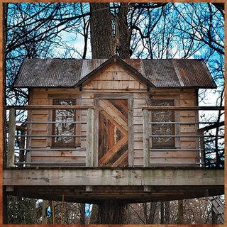 Tree house blog