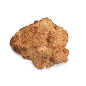 Australian Brown Mallee Burl Cap - 1 kg - 2 kg
