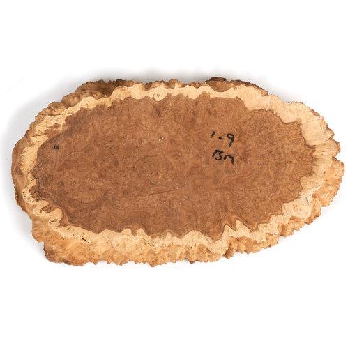View a Larger Image of Australian Brown Mallee Burl Slice 1kg-2kg