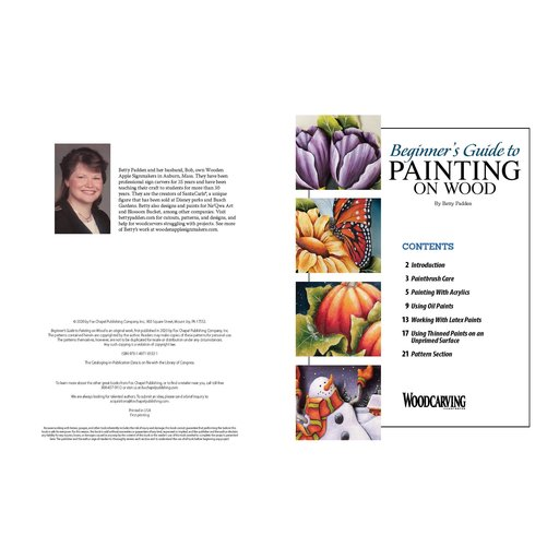 View a Larger Image of Beginner's Guide to Painting on Wood