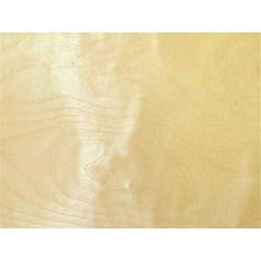 """View a Larger Image of Birch, White 2"""" x 50' Pre-glued Wood Edge Banding"""