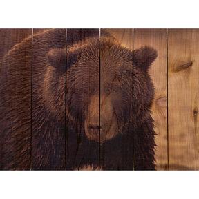 Big Bear 33x24 Wood Art
