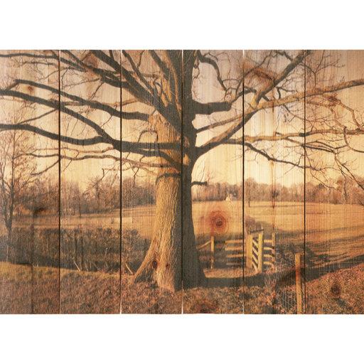 View a Larger Image of Big Oak 22.5x16 Wood Art