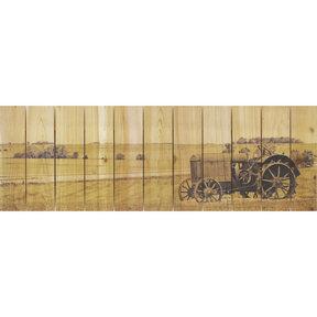Heart Land 32x11 Wood Art