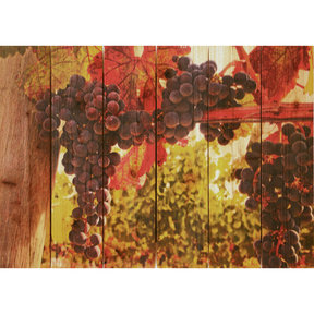 Old Vines 22.5x16 Wood Art