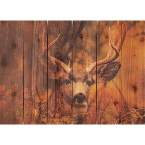 Perfect Look 22x16 Wood Art