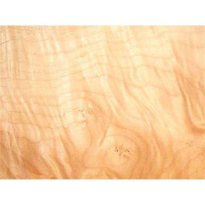 """Maple, Figured Wood Veneer - 4-1/2"""" to 6-1/2"""" Width - 12 Square Foot Pack"""
