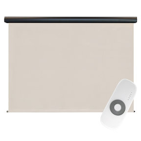 Premier Rechargeable Motorized Outdoor Sun Shade with Protective Valance, 6' W x 8' L, Palm