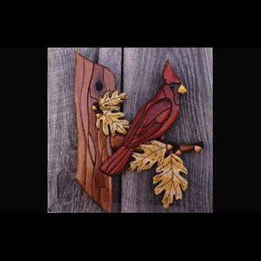 Cardinal Intarsia Pattern
