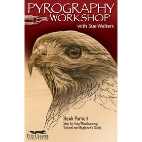 Pyrography Workshop with Sue Walters 2-DVD Set and Booklet