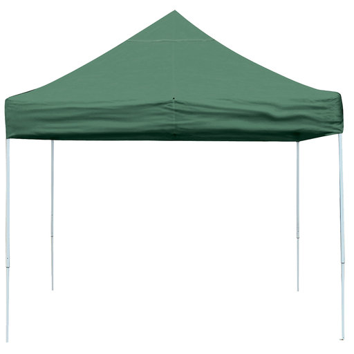 View a Larger Image of 10 ft. x 10 ft. Pro Pop-up Canopy Straight Leg, Green Cover