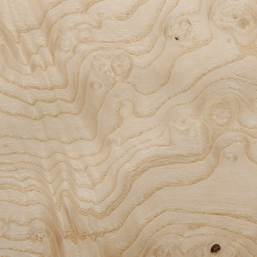 View a Larger Image of White Ash Burl Veneer Sheet 4' x 8' 2-Ply Wood on Wood