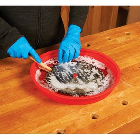 Blade Cleaning Tray