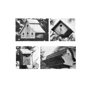 Woodworking Project Paper Plan to Build Backyard Birdhouse