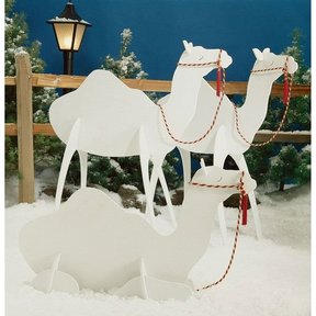 Woodworking Project Paper Plan to Build Camels