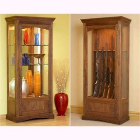 Woodworking Project Paper Plan to Build Convertible Display and Gun Cabinet