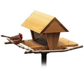 Woodworking Project Paper Plan to Build Snack Shop Bird Feeder