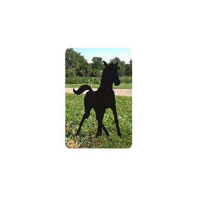 Woodworking Project Paper Plan to Build Spring Foal Shadow